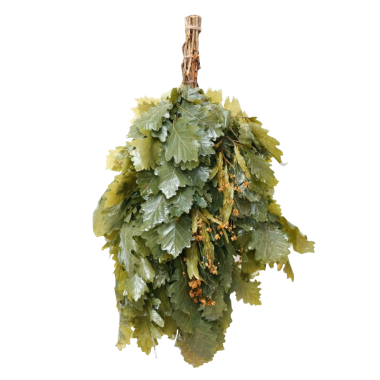Witki dębowe z eukaliptusem