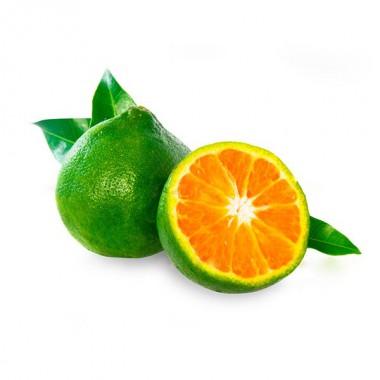 Mandarynka zielona
